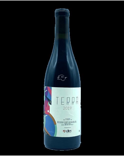 Thibaud Capallero - SLOPE - Syrah 'Terra' 2019 - Avintures