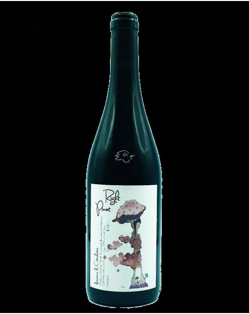 Domaine La Côtelette - Benoit Kilian - Right Pinot 2020 - Avintures
