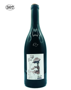 Domaine La Côtelette - Benoit Kilian - Right Pinot 2020 Magnum - Avintures