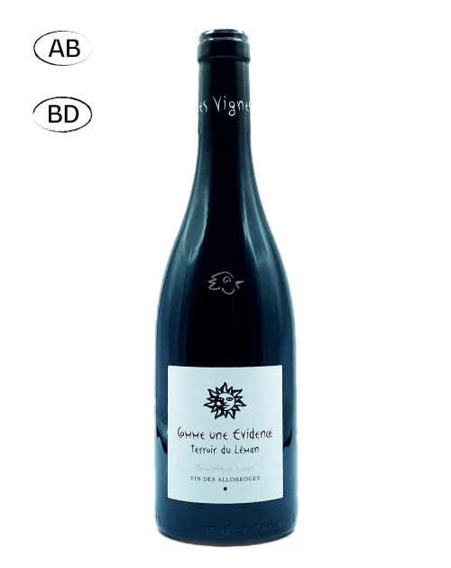 Les Vignes de Paradis - Pinot Noir Comme Une Evidence 2020 - Avintures